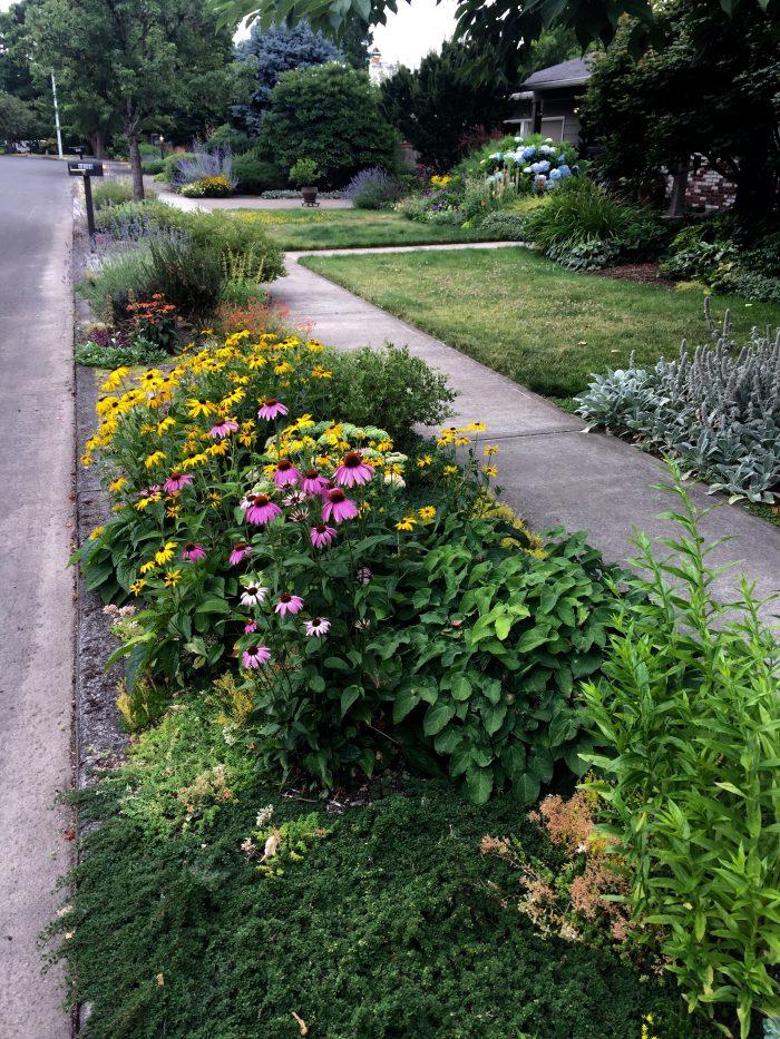 Education Garden at Portland Community College Rock Creek ...
